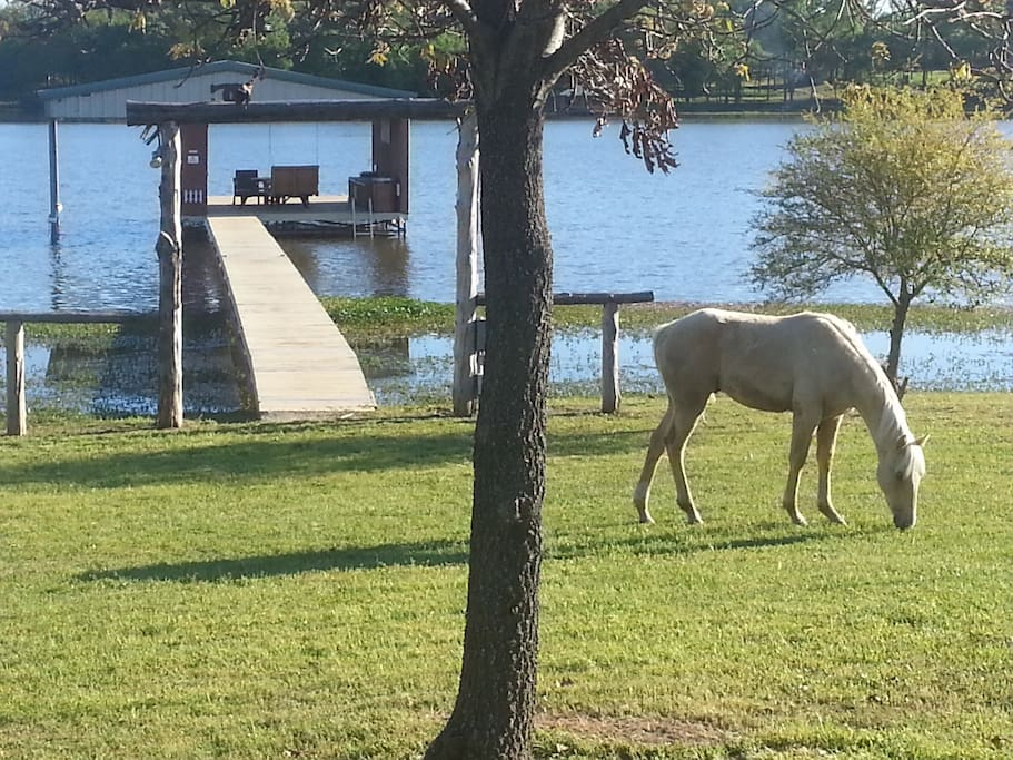 Mustang Ranch On Lake Fork Barns For Rent In Alba