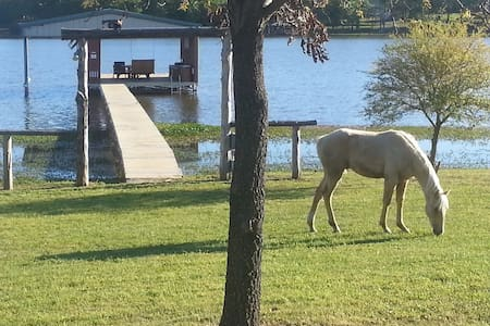 Mustang Ranch on Lake Fork - Alba