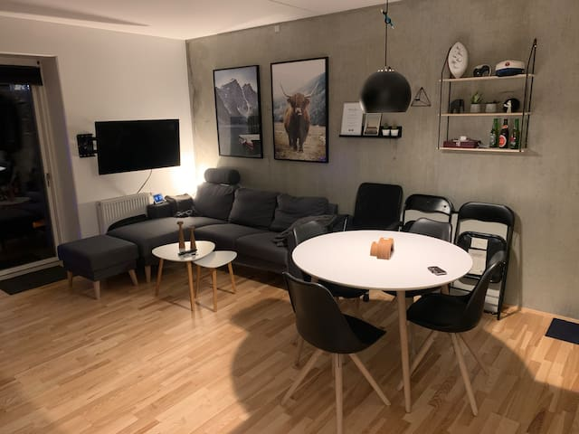 Full New Yorker Style Apartment in Central Aarhus