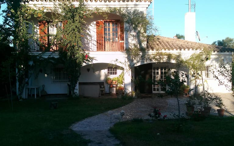 Beautiful and spacious villa with chimney - Arcos de la Frontera