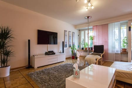 Cozy and quiet room close to the city center - バーゼル