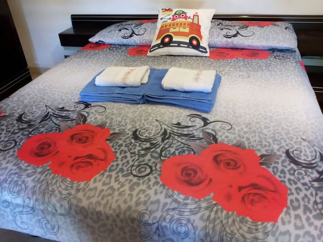 Spacious room  with Double bed,20 Mins fromTermini