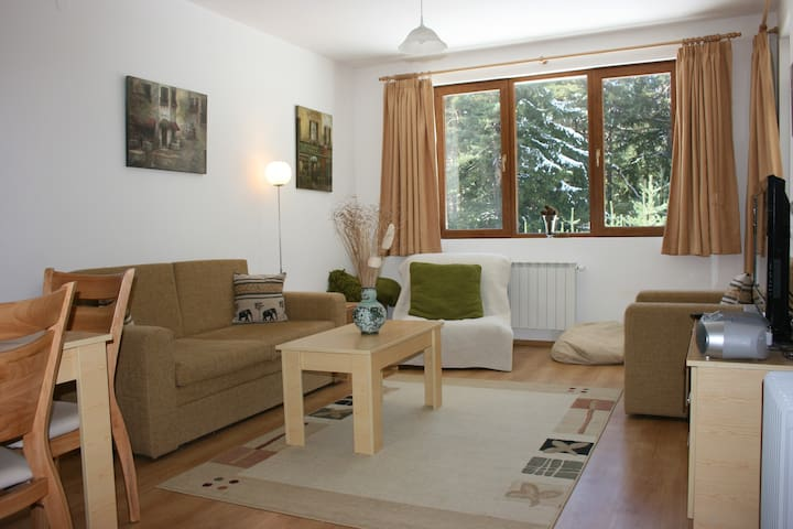 A comfortable one bedroom apartment with Wi-fi. - Borovets - Pis