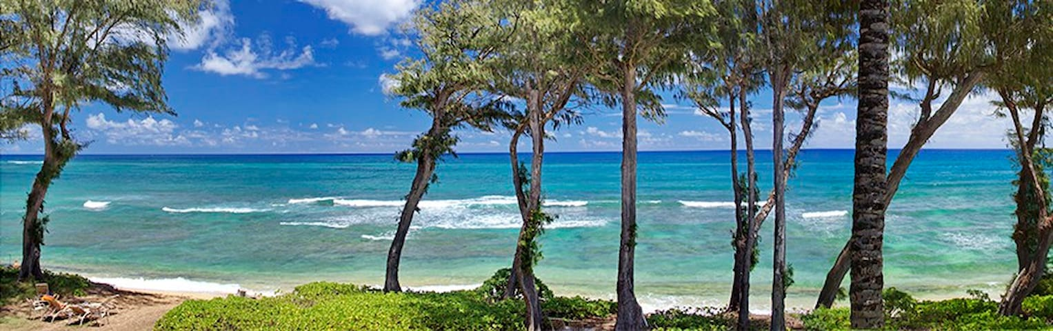 Kauai Top Floor Direct Oceanfront Condo #328