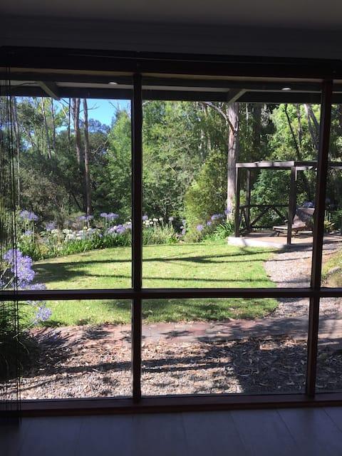 Studio de jardin buissonnant