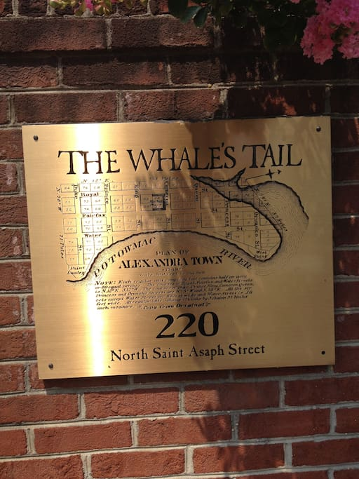 Complex is called The Whale's Tale!