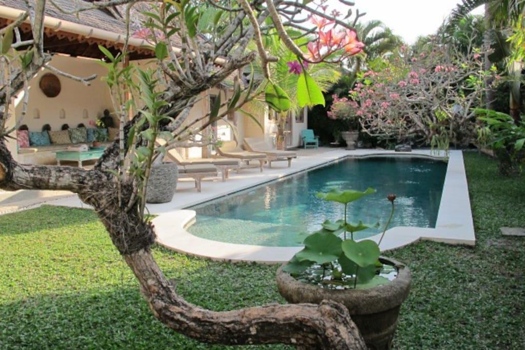2 Lovely Traditional villa's with 6 bedr 6 bathr. 2 pools, interconnecting door.