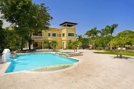 Villa Carlotta - Castle Garden Pool Terrace for 20 - Miami - Villa