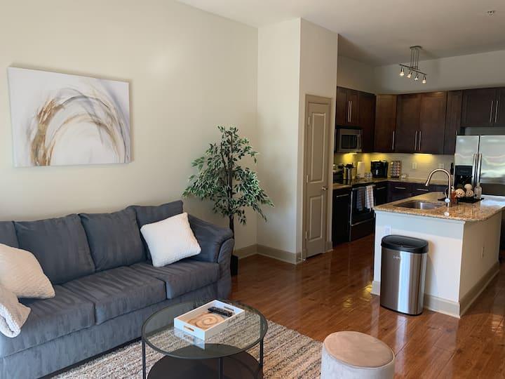 NEW King 1 Bedroom Luxury Apartment