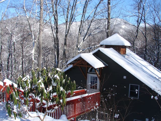 Secluded Cabin Minutes to Asheville - Swannanoa - Srub