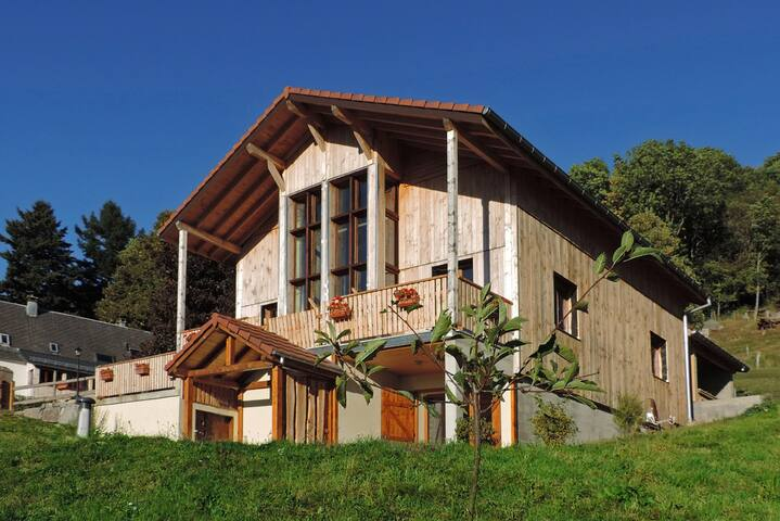 Loft du Selsersbach en pleine nature - Soultzeren - Appartamento
