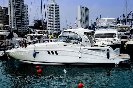 42.5ft Sea Ray Cruiser - Rent a Boat for a day! - Carthagène