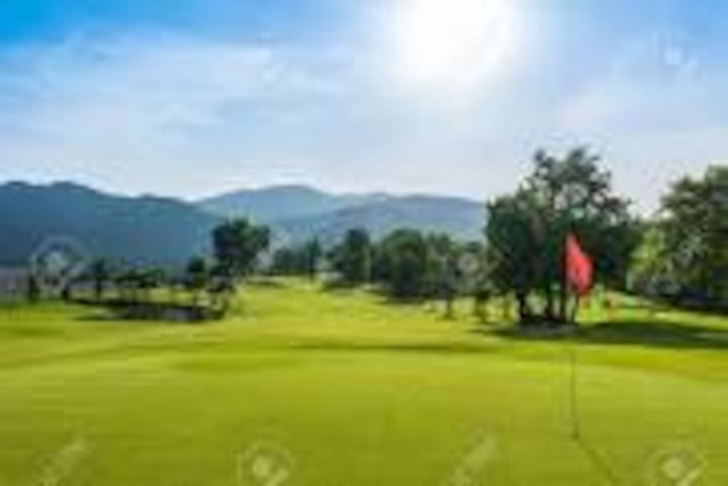INSIDE DEL PROYECT . camp of Golf