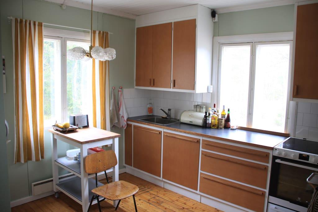 Kitchen with dishwasher, induction stove and wood burning stove.