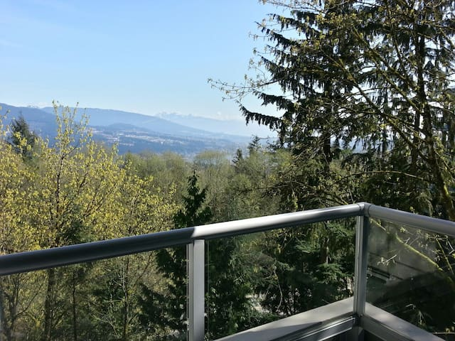 Balcony view overlooking Port Moody and the Golden Ears