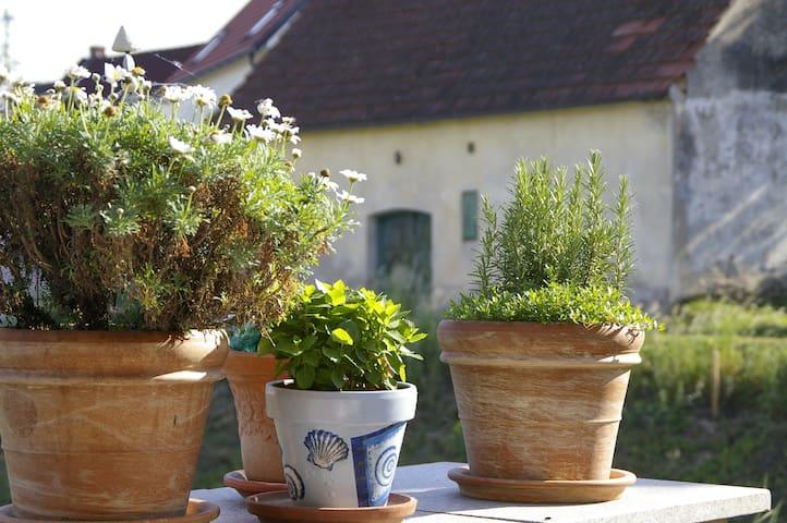 Ferienwohnung Sachsenberg