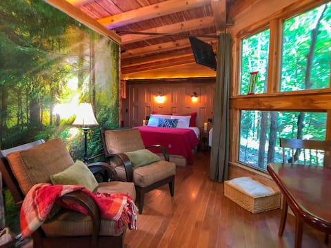 Queen. Fast WIFI. SmartTV. FirePit. Secluded Woods