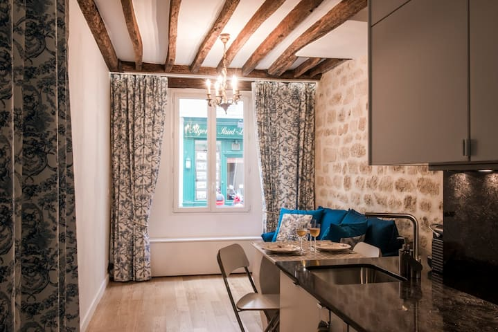 Studio 20m2 Ile Saint Louis - historical center - パリ