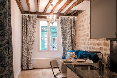 Studio 20m2 Ile Saint Louis - historical center - 巴黎 - 公寓