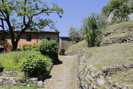 La Tana di Cucciano - Pistoia - Huis