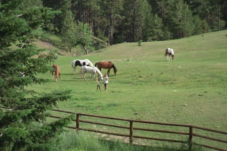 Horse ranch w/hot tub, backs to hiking trails!