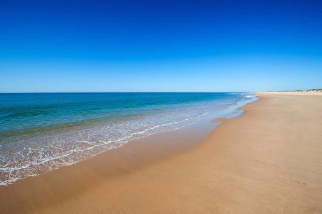 Playa virgen