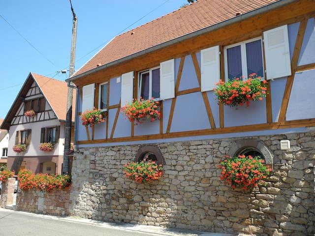 """Maison Alsacienne """"le châtaignier"""" à EPFIG - Epfig - Haus"""