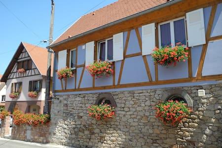 """Maison Alsacienne """"le châtaignier"""" à EPFIG - Epfig - Hus"""
