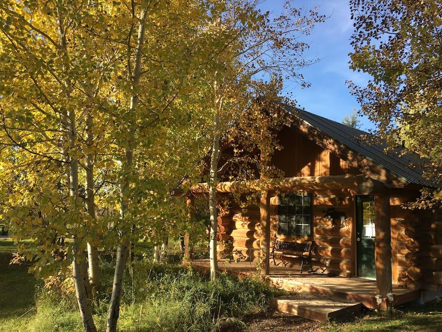 Real log cabin set in Aspens
