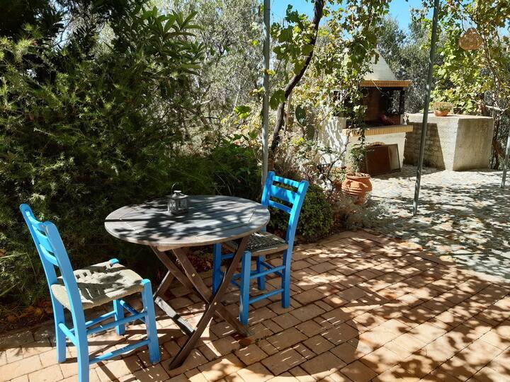 Olive Grove Madara - Studio