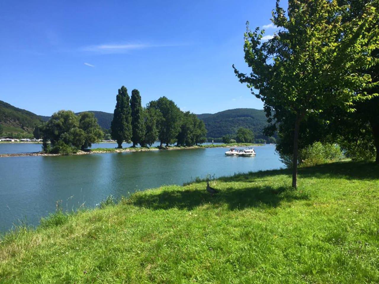 Direkte Umgebung Blick auf den Rhein