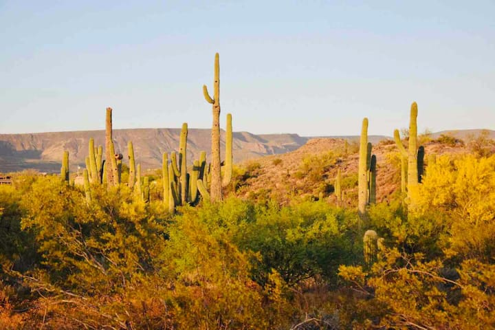 Private,Luxury, Hiking,Hot-Tub,Pool,Desert Oasis