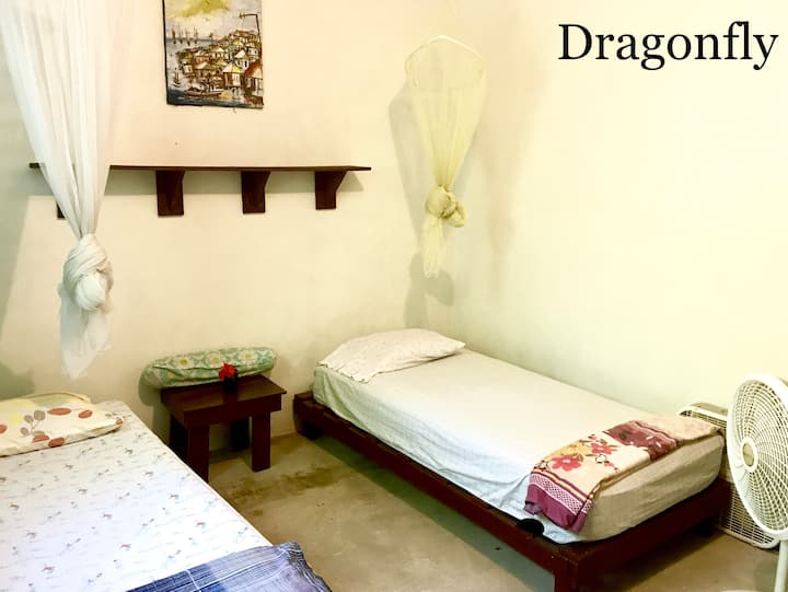 Dragonfly Room