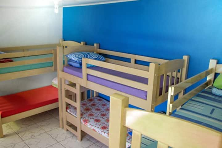 Olah Hostel Vila Mariana - 6 Bed Mixed Shared Room