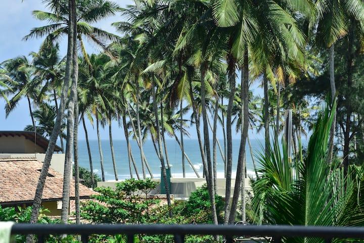 Green Almond Mihripenna Beach