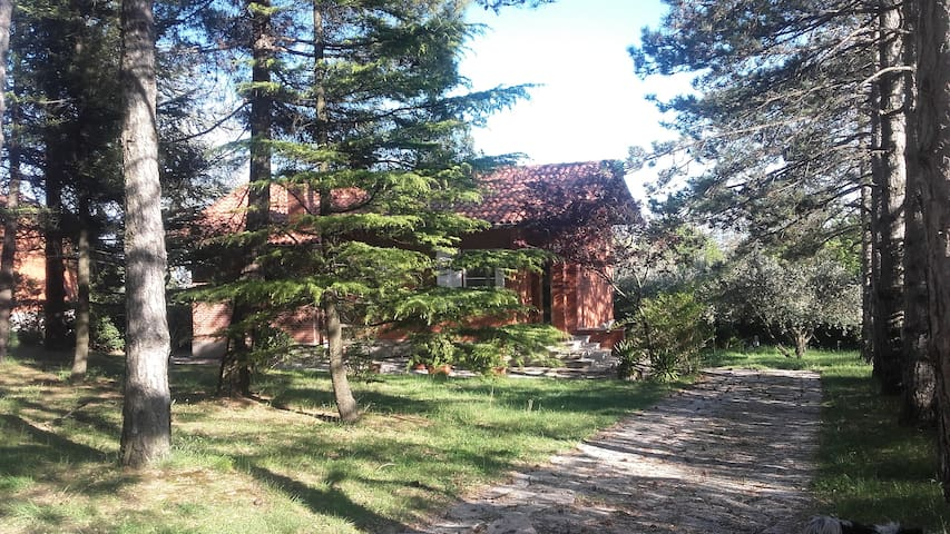 Villa con giardino e vista mare - Beato Sante Mombaroccio, (PU) - Casa