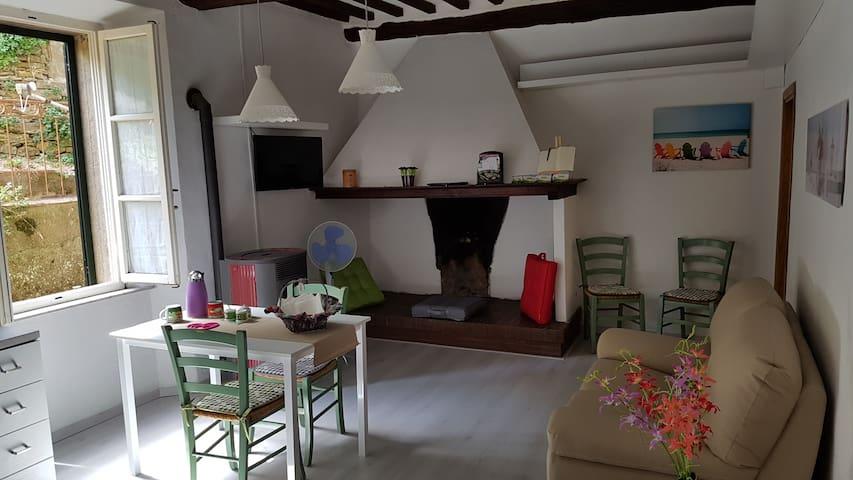 L'angolo di Zenzero - Montieri - Apartment