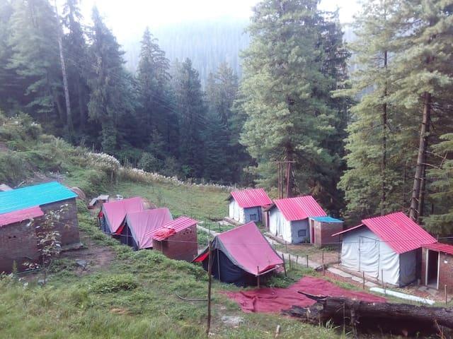 Vanvaas camp.narkanda