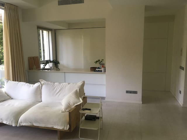 Spacious apartment with terrace in condo with pool