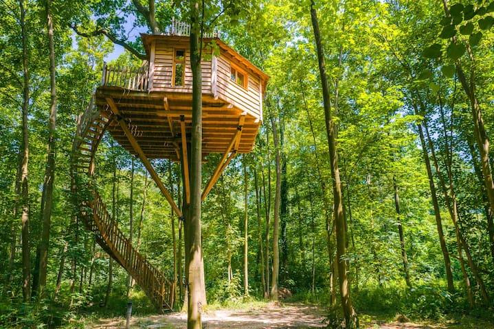 Cabane Canopée pour 2 personnes