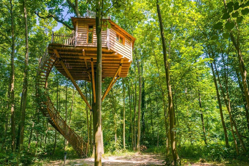 cabane canop e pour 2 personnes cabanes dans les arbres louer raray hauts de france france. Black Bedroom Furniture Sets. Home Design Ideas