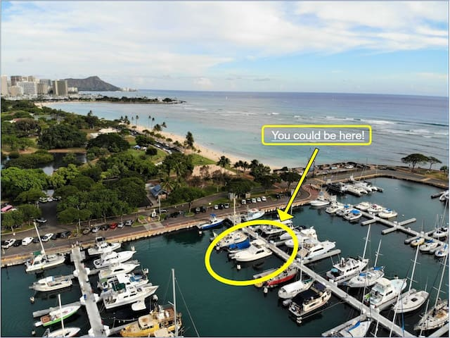 Stay on the Water in Ala Moana /FREE PARKING!!