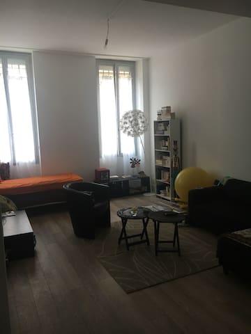 Mignon appartement, centre Toulouse - Toulouse - Apartment
