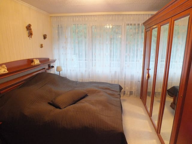 Nice Apartment with Pool (60m2) - Bingen am Rhein - Daire