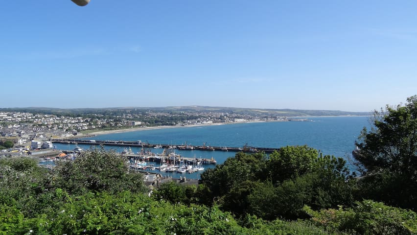 View over Newlyn Harbour from the street