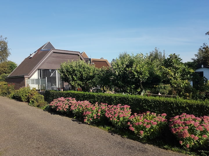 Lovely Bungalow till 6 p. near Amsterdam and Sea