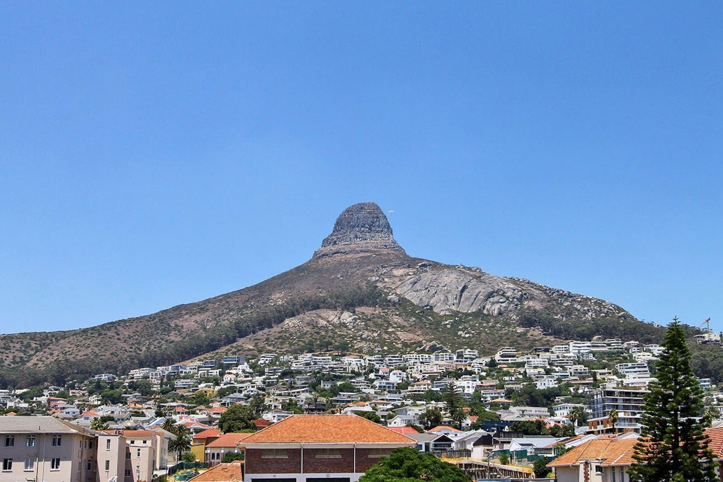 View of Lions Head from balcony