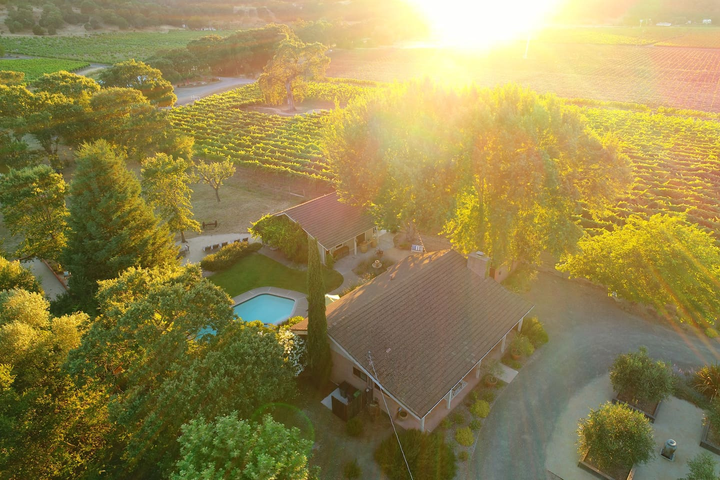 Sunset over the vineyard. Welcome to Sonoma Pool House.