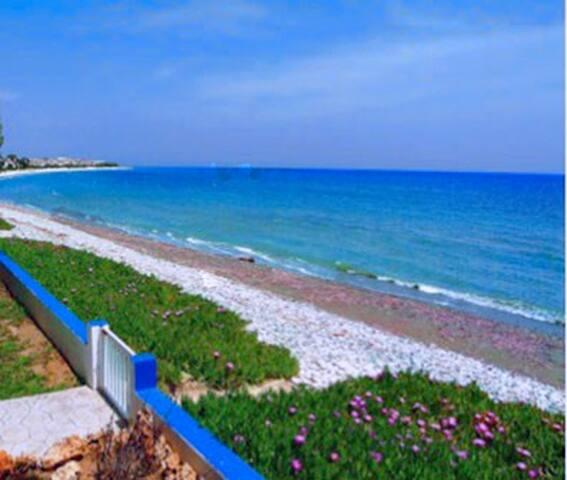 Luxury Beach Villa - Larnaca,Meneou - Kiti - Villa