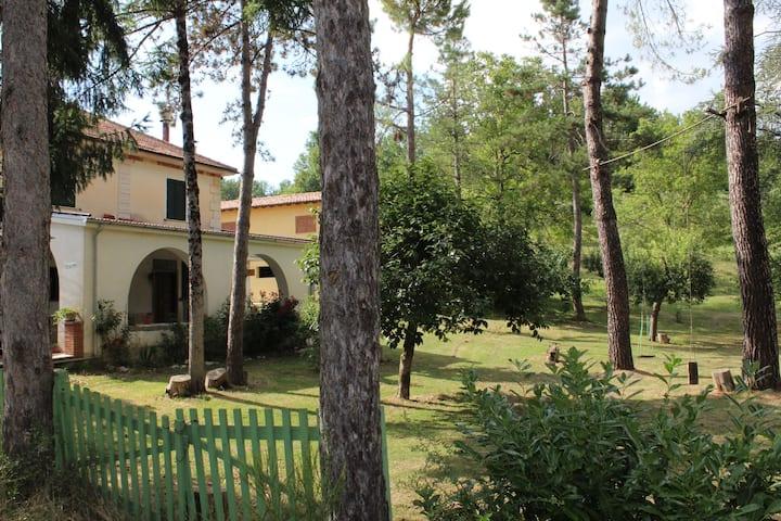 """""""Parco dei Pini"""" - Stanza privata """"Lavanda"""""""